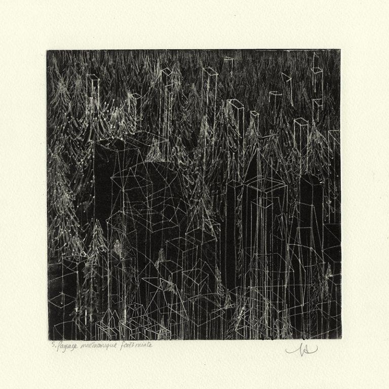 JT. PM forêt mixte 2, monotype impression taille-douce, 28 cm x 28 cm
