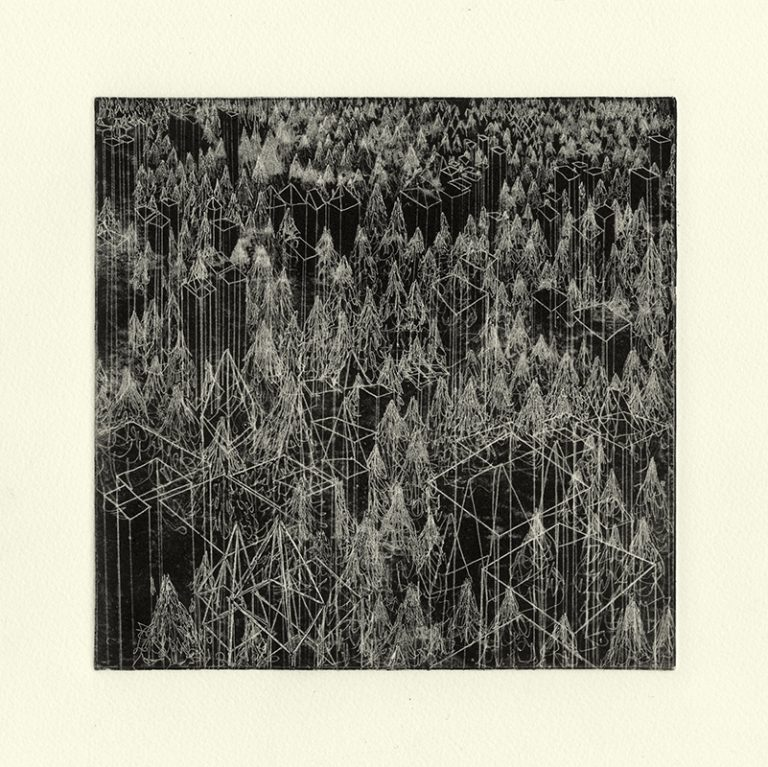 JT. PM forêt mixte 1, monotype impression taille-douce, 28 cm x 28 cm