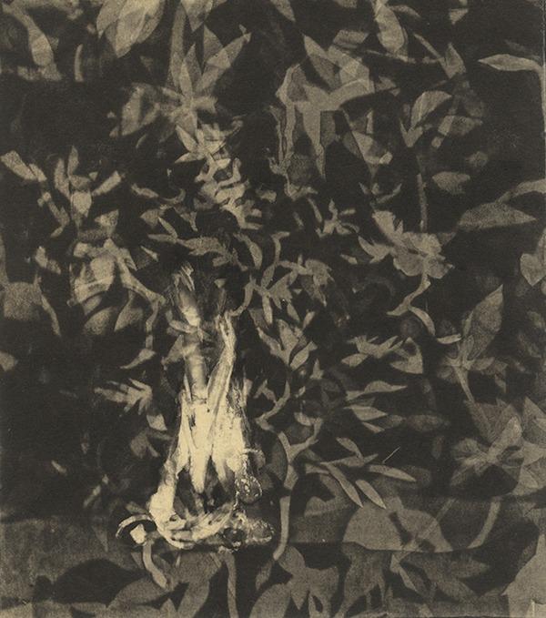 jT. Feu_1, estampe variante_35 x 28 cm